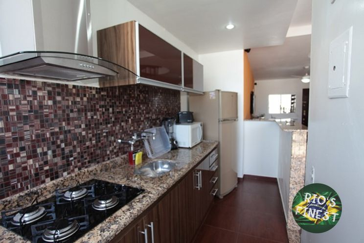 2 bedroom duplex penthouse with private pool  in posto 6 of